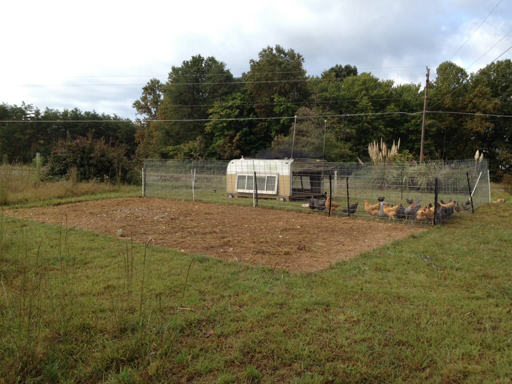 Mobile coop homesteading