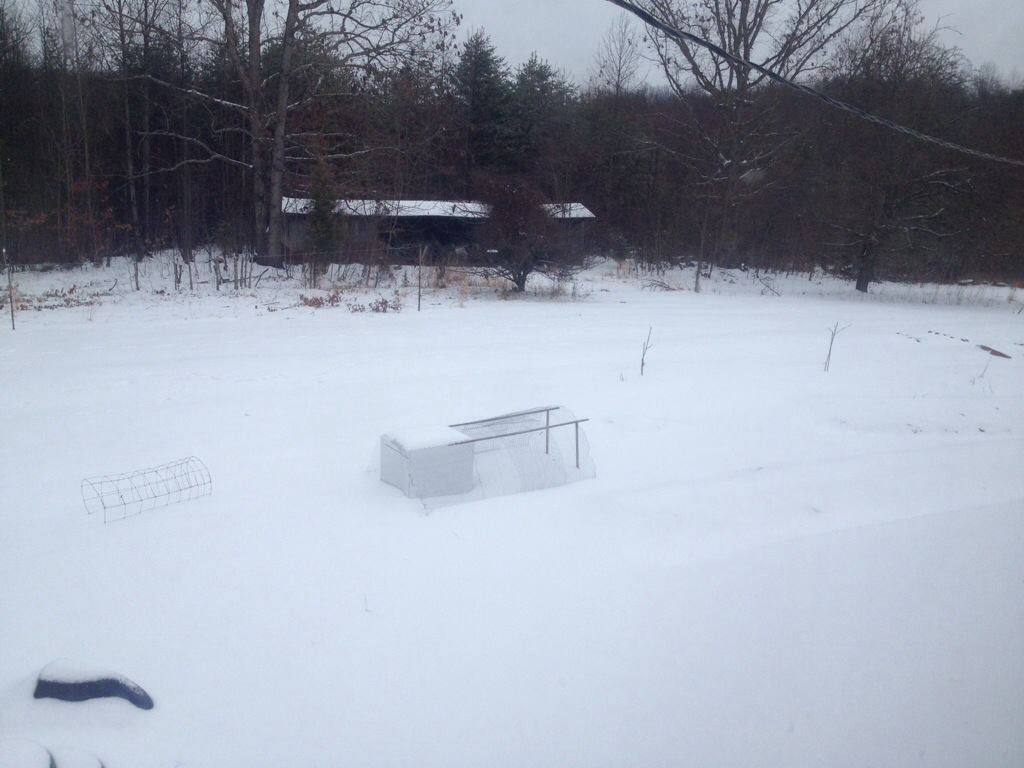 almost completed chicken tractor in the snow