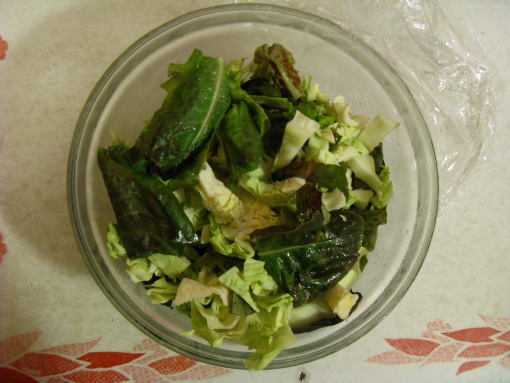 my yummy lettuce/cabbage salad!
