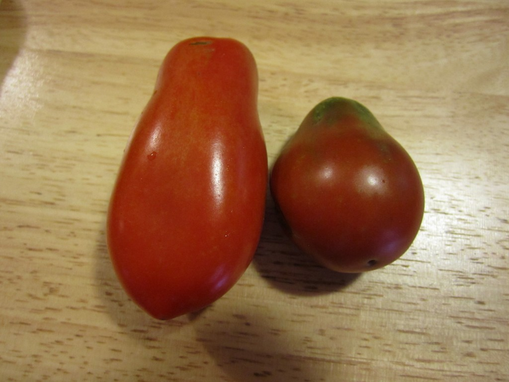 san marzano on the left, black plum on the right.